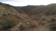 Big Morongo Canyon